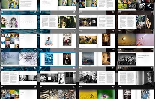 1 photo dans VirusPhoto Magazine #2 + 1 photo concours Compétence Photo