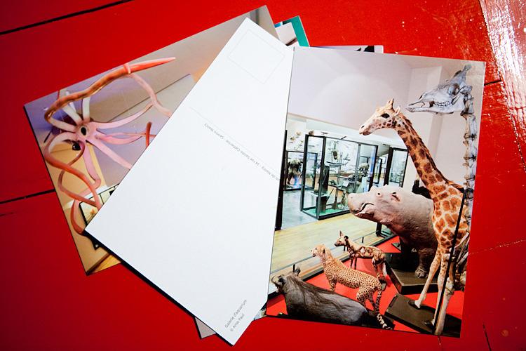 Muséum-Aquarium de Nancy :: commande illustration
