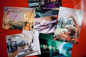 Cartes postales - Muséum-Aquarium de Nancy