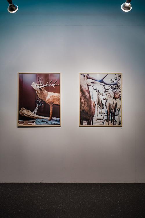"""Exposition """"Inventaire"""" – CCAM Vandoeuvre-lès-Nancy"""